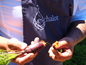 Fresh produce from Eschalot restaurant garden with head chef Matty Roberts - Taste of the Highlands gourmet food and wine tour from Sydney