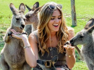 Hand feeding kangaroos and wallaby - Wildlife, Waterfalls & Wine day tour from Sydney