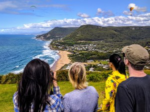 Views down along the Grand Pacific Drive - Wildlife, Waterfalls & Wine day tour from Sydney